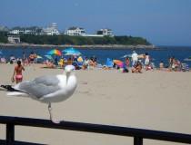 Los Hamptons, el retiro de los ricos y famosos de Nueva York