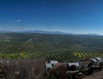 El oleoturismo, la mejor manera para conocer el oro verde de Jaén