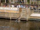 Gatorland, un espectacular parque con cocodrilos en Orlando