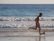 Descubre las playas que permiten perros en Andalucía