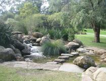 Kings Park, los jardines más populares de Perth