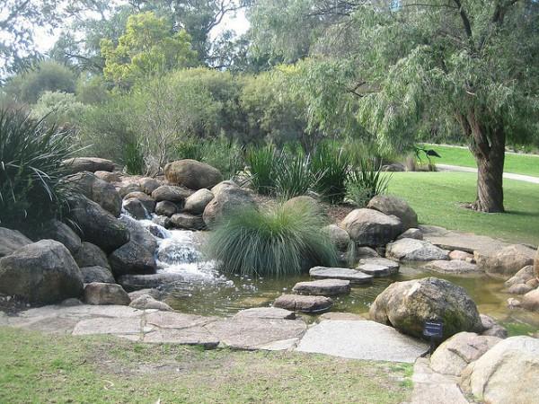 Kings Park es el parque más famoso de Perth