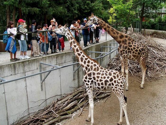 Parque Zoológico de Schmiding