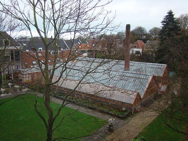 Jardín Botánico de la Universidad de Utrecth