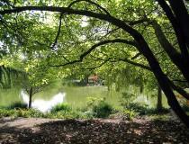 Parque Minoru en Richmond