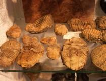 Museo de Minerales de Siofok
