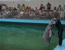 Aquarium de Valencia