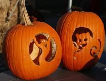 Las calabazas, toda una tradición del otoño en Estados Unidos