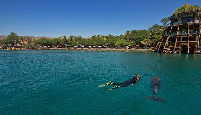 Playa Dolphin Reef en Eliat