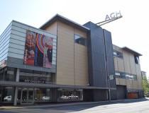Galería de Arte de Hamilton