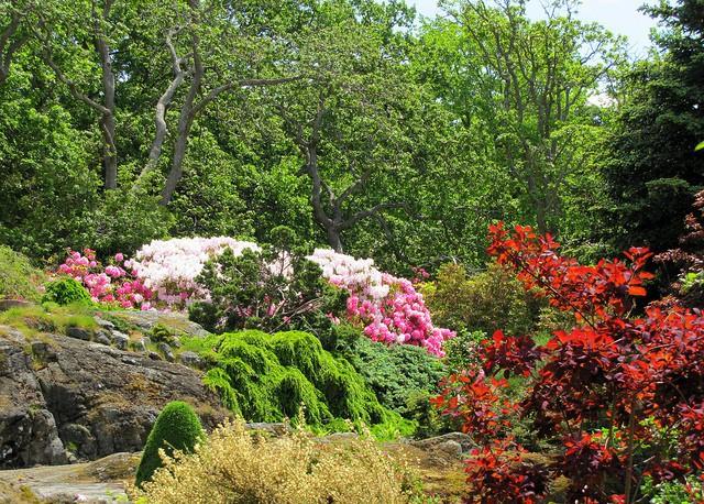 Jardín Abkhanzi en Victoria