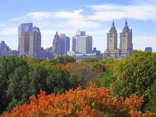 otoño nueva york
