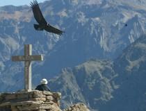 Mirador de la Cruz del Cóndor