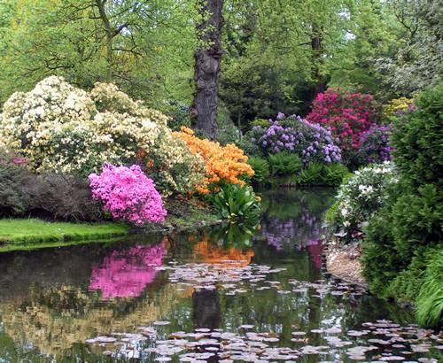 Arboretum Trompenburg, jardín botánico de Rotterdam