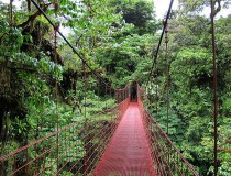 Veragua Rainforest Research and adventure Park en Costa Rica