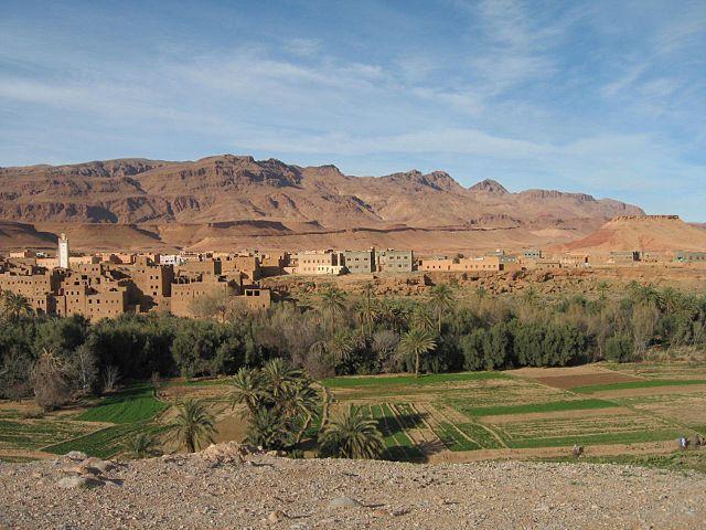 Macro Fossiles Kasbah en Erfoud