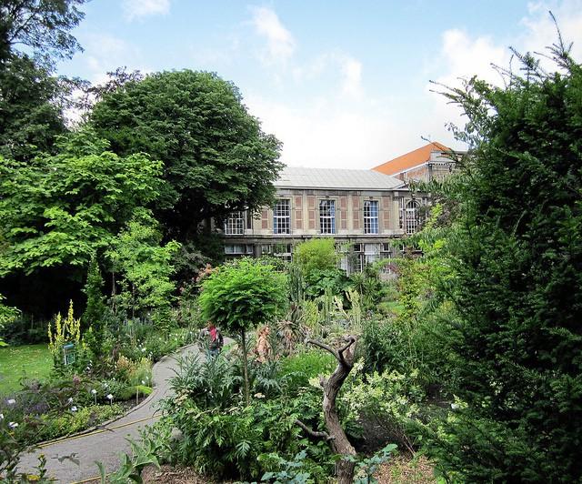 Jardín Botánico de Amberes