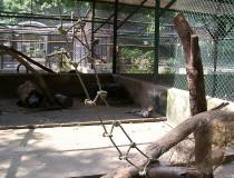 Parque Zoológico Las Delicias en Maracay