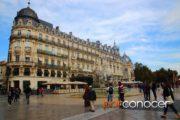 MontpellierPC_06