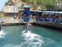Acuario y Museo del Mar del Rodadero