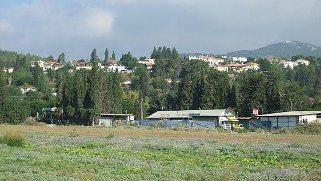 Museo Dubrovin Estate en Israel