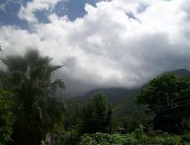Parque Nacional Henri Pittier en Maracay