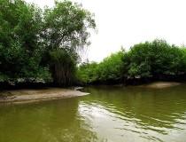 Reserva Ecológica Manglares Churute en Guayas