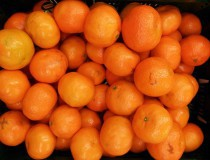 Clemenules, las mejores clementinas del mundo
