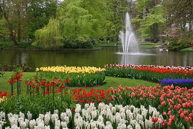 Jardín Keukenhof en Holanda