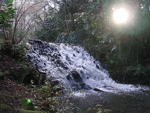 Parque Marlay en Irlanda