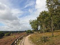 Parque Nacional Veluwezoom en Holanda