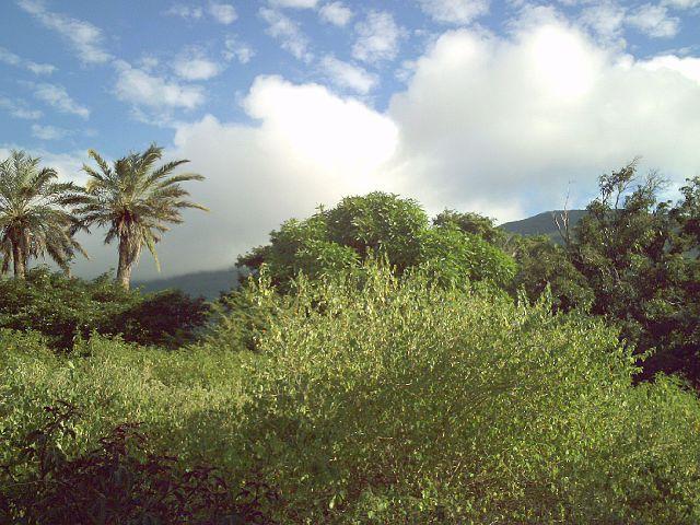 Parque Nacional Cerro El Copey