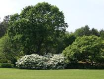 Jardín Geográfico de Kolding