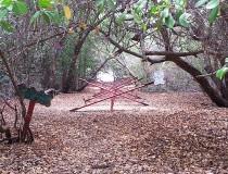 Parque Comunal de Manglares en Maracaibo