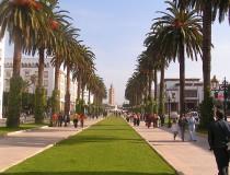 Museo de Ciencias Naturales de Rabat