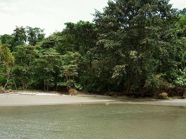 Reserva ecológica Manglares Cayapas-Mataje