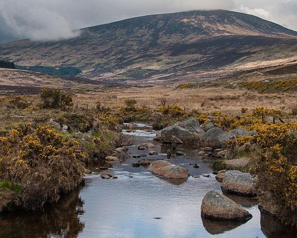 Parque Nacional Montañas de Wicklow