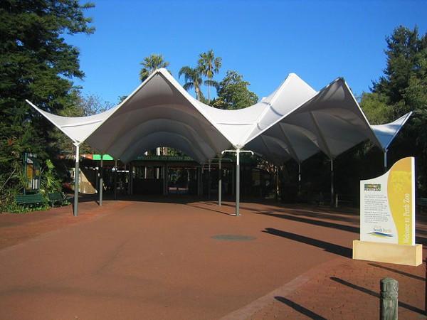 El Zoo de Perth es una de las atracciones turísticas de la ciudad