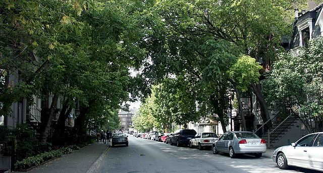Calle McGill de Montreal