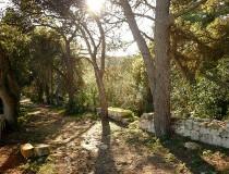 Jardines Buskett en Malta