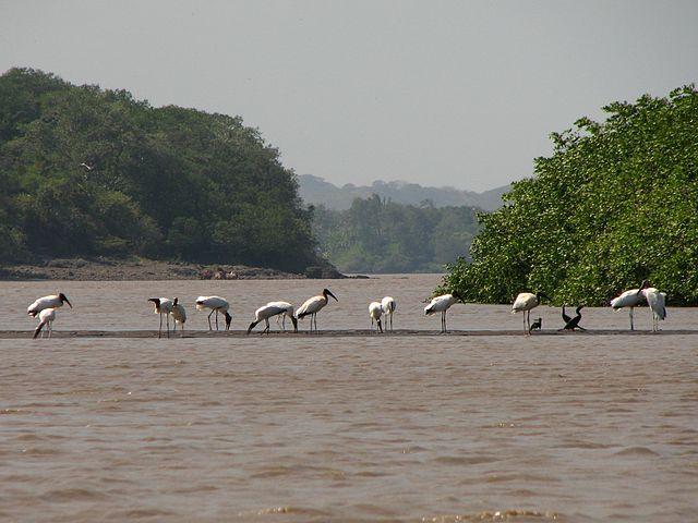 Área de Conservación Arenal Tempisque