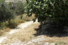 Villa Nazaret en Israel