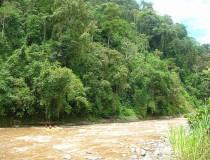 Río Pacuare en Costa Rica