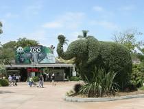 Zoológico de San Diego