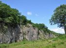 Bosque Almindingen en Dinamarca