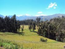 Museo Arqueológico de Ancash en Huaraz