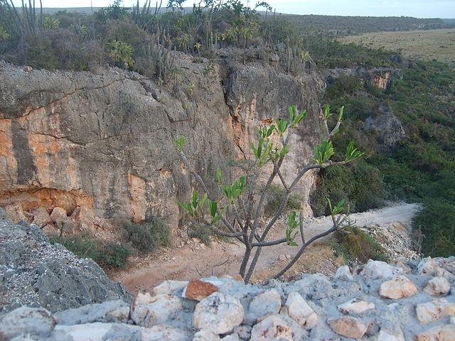 Parque Nacional José del Carmen Ramírez