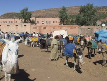 Valle Asni en Marruecos