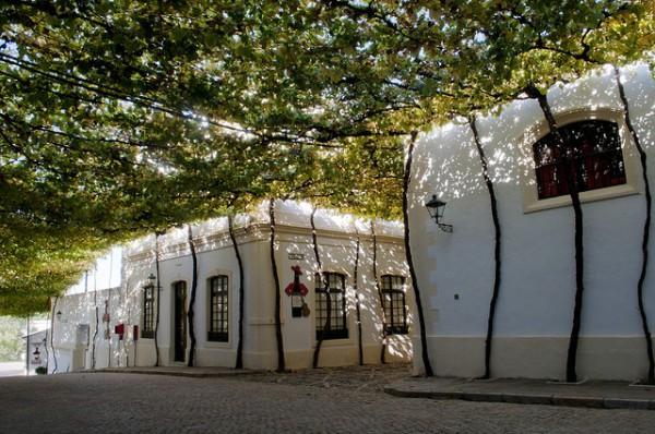 Las Bodegas Tío Pepe son las más conocidas de Jerez
