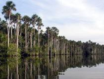 Lago Sandoval en Perú
